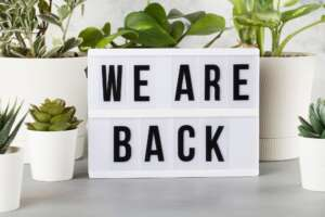 Light box with text we are back among the plants in pot
